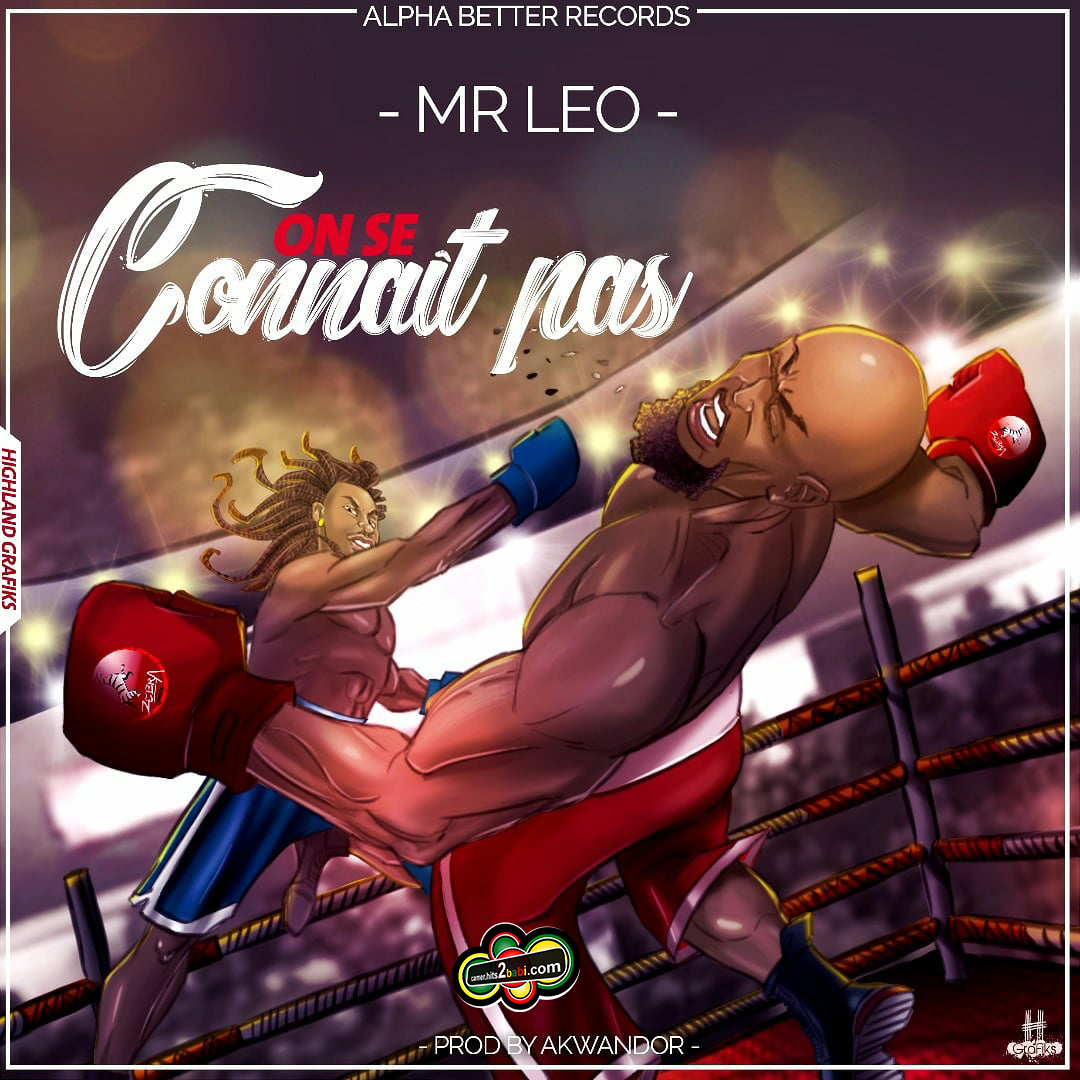 MR LEO - ON SE CONNAIT PAS